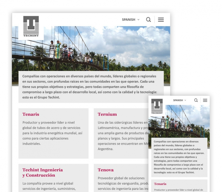 techint-producto1